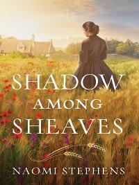 Cover Shadow among Sheaves