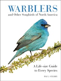 Cover Warblers and Other Songbirds of North America