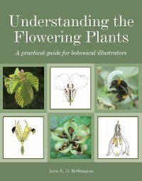 Cover Understanding the Flowering Plants