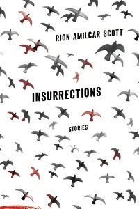 Cover Insurrections