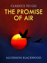 Cover Promise of Air