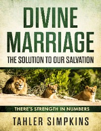 Cover Divine Marriage: The Solution  to Our Salvation - There's Strenght In Numbers