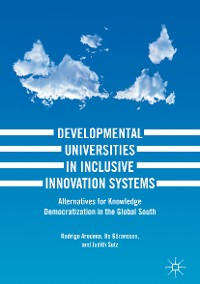 Cover Developmental Universities in Inclusive Innovation Systems