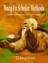 Cover Kung Fu Scholar Methods: Internal Strikes In 100 Days