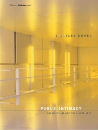 Cover Public Intimacy