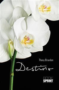 Cover Destino
