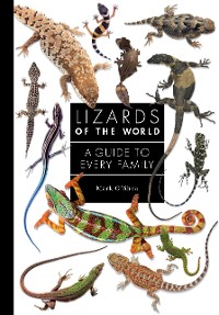 Cover Lizards of the World