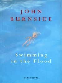 Cover Swimming In the Flood