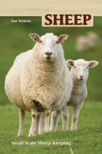 Cover Sheep