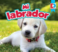 Cover Mi labrador