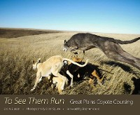 Cover To See Them Run