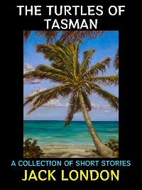 Cover The Turtles of Tasman