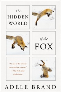 Cover Hidden World of the Fox
