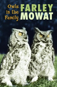 Cover Owls in the Family