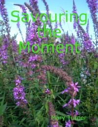 Cover Savouring the Moment