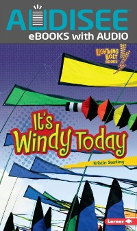 Cover It's Windy Today