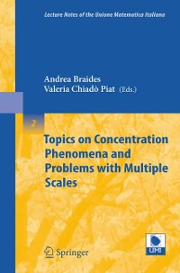 Cover Topics on Concentration Phenomena and Problems with Multiple Scales
