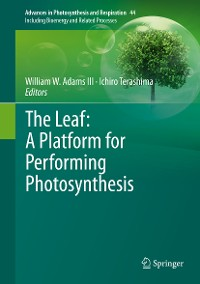 Cover The Leaf: A Platform for Performing Photosynthesis