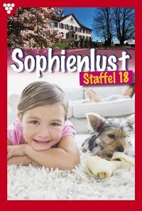 Cover Sophienlust Box 17 – Familienroman