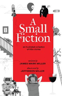 Cover A Small Fiction