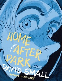 Cover Home After Dark: A Novel