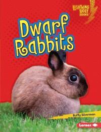 Cover Dwarf Rabbits