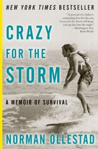 Cover Crazy For The Storm