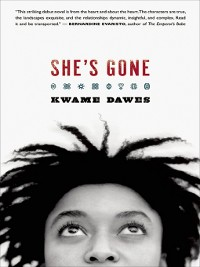 Cover She's Gone