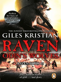 Cover Raven 3