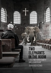 Cover Two Elephants in the Room