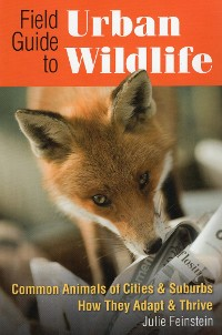 Cover Field Guide to Urban Wildlife