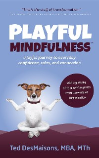 Cover Playful Mindfulness