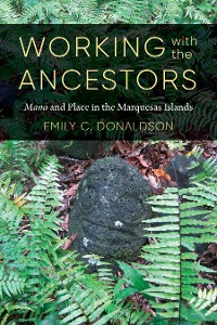 Cover Working with the Ancestors