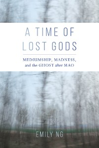 Cover A Time of Lost Gods