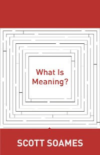 Cover What Is Meaning?