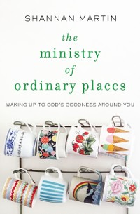 Cover Ministry of Ordinary Places