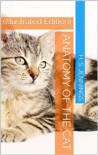 Cover Anatomy of the Cat