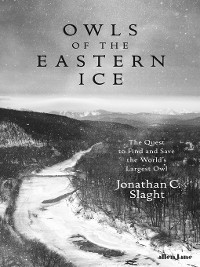 Cover Owls of the Eastern Ice