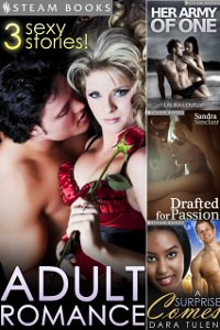 Cover ADULT ROMANCE - 3 Sexy Stories!