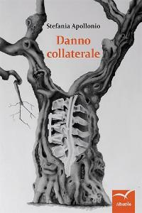 Cover Danno collaterale