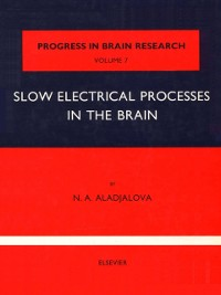 Cover Slow Electrical Processes in the Brain