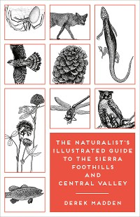 Cover The Naturalist's Illustrated Guide to the Sierra Foothills and Central Valley