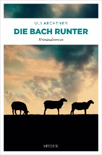 Cover Die Bach runter