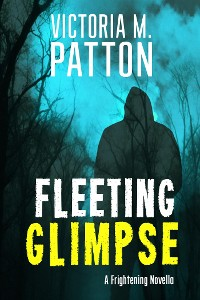 Cover Fleeting Glimpse