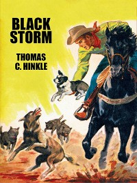 Cover Black Storm