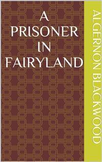 Cover A Prisoner in Fairyland