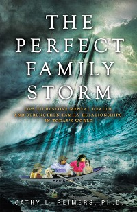 Cover The Perfect Family Storm