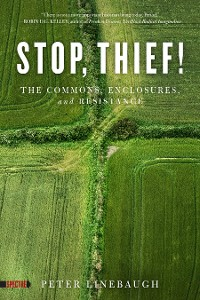 Cover Stop, Thief!