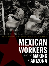 Cover Mexican Workers and the Making of Arizona