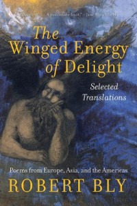 Cover Winged Energy of Delight